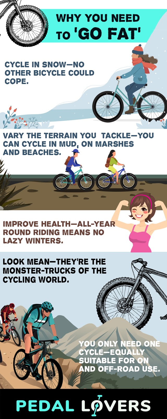 best fat tire bikes infographic
