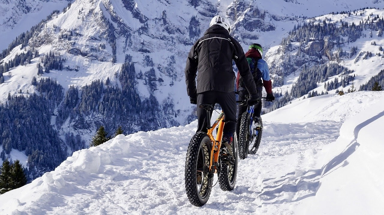 The 5 Best Fat Tire Bikes